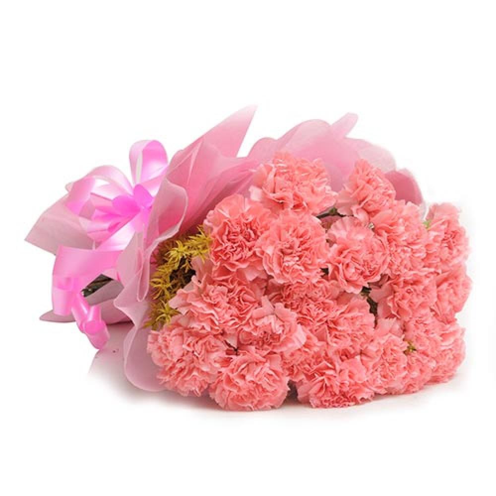 Blushy Carnations