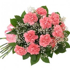 Pink Carnations Carnival