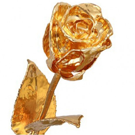 11 inch Golden Rose Gift Box (Free Shipping)
