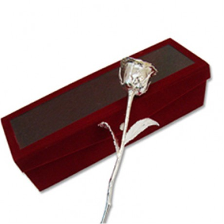 Silver Rose Gift 6 Inch Approx (Free Shipping)
