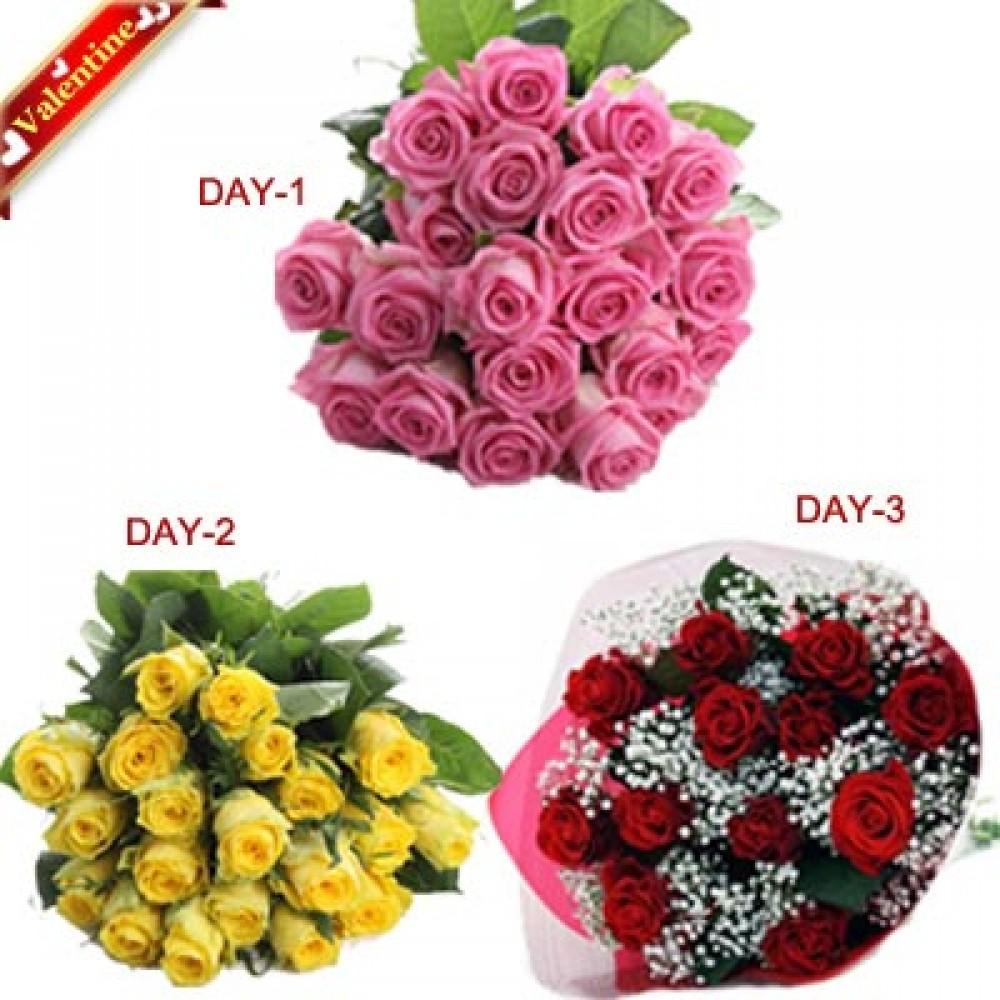 Valentine 3Days 20Roses Serenade