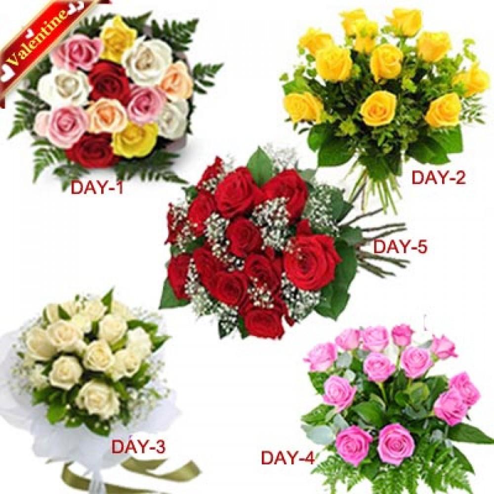 Valentine 5 Days Serenade