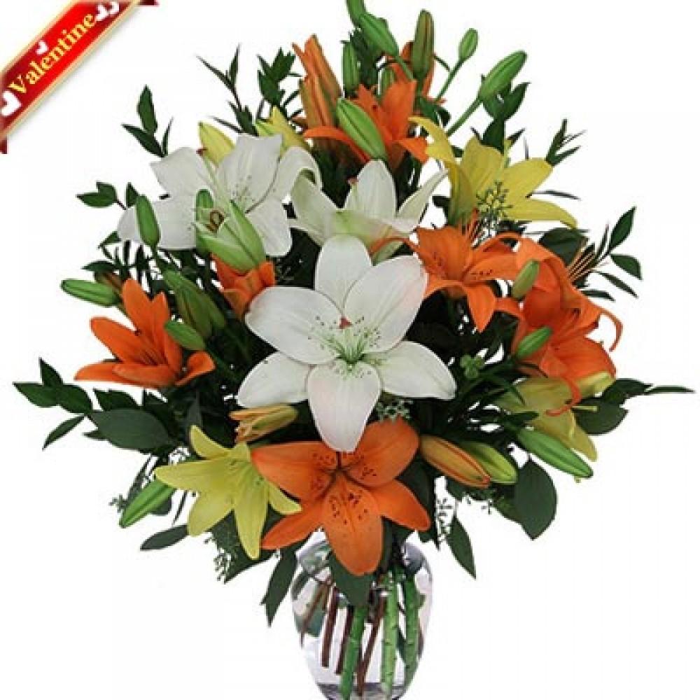 Valentine Lily in Vase