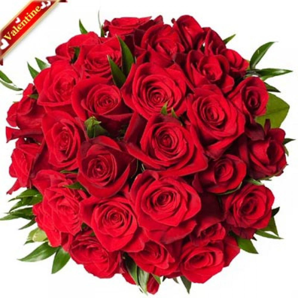 Valentine Red Rose Spirit