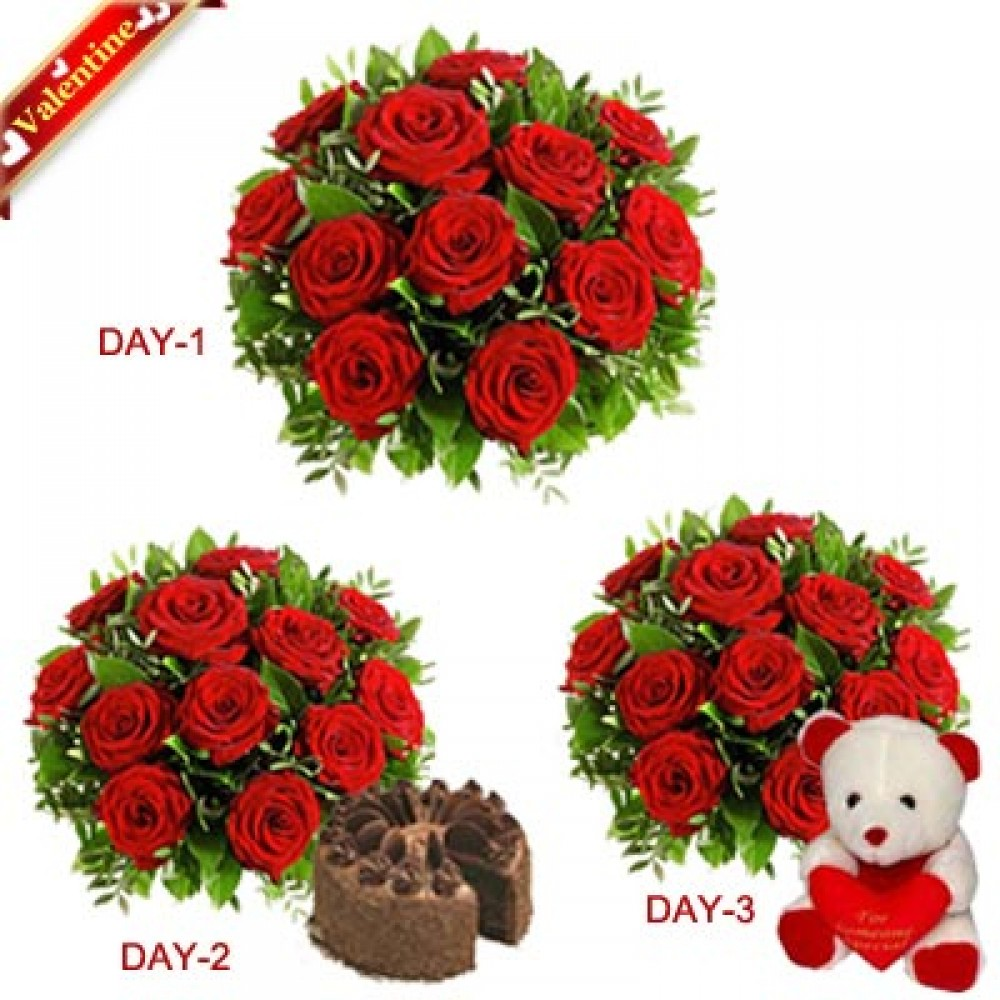 Valentine Red Roses 3Days Serenades