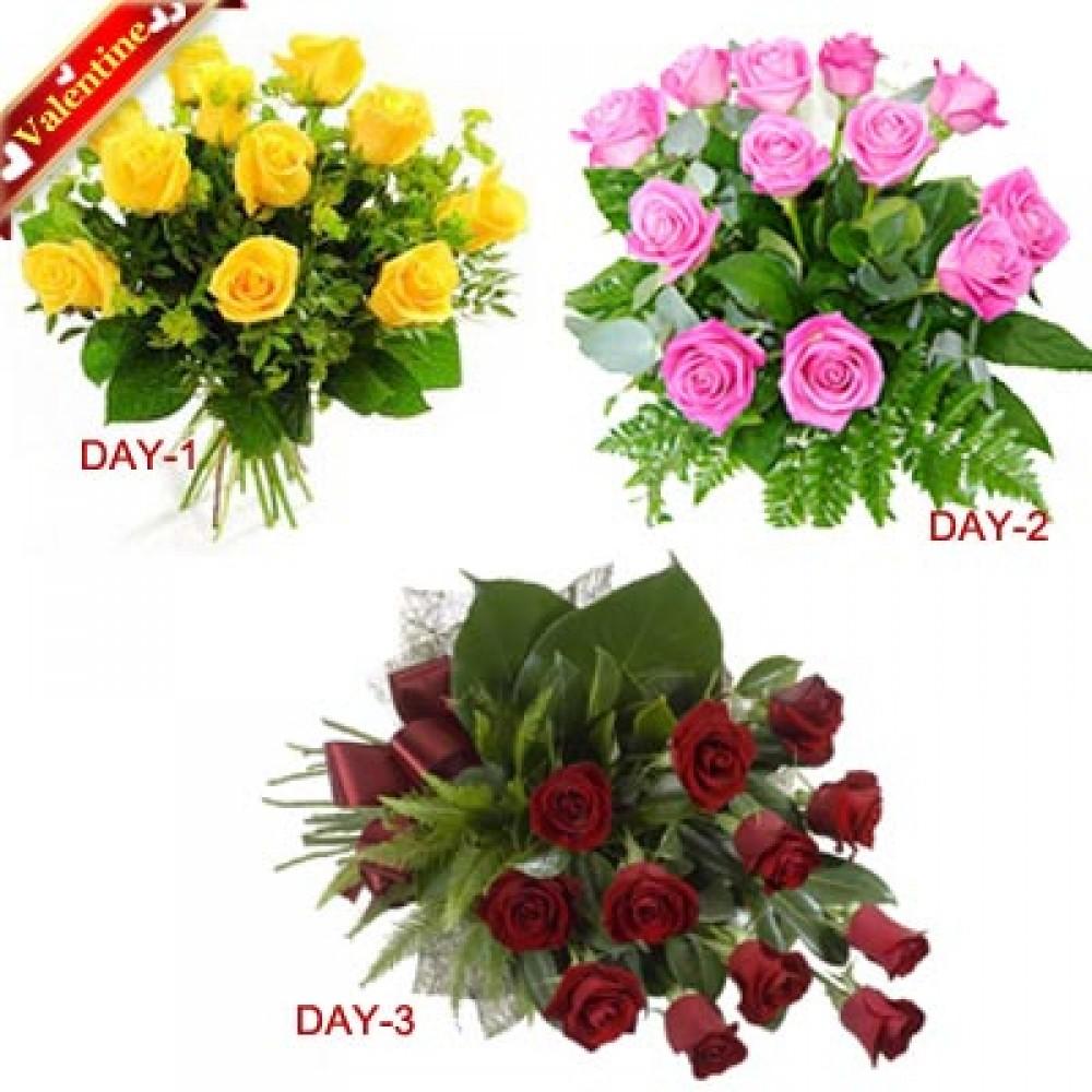 Valentine Special 3Days Roses Serenade