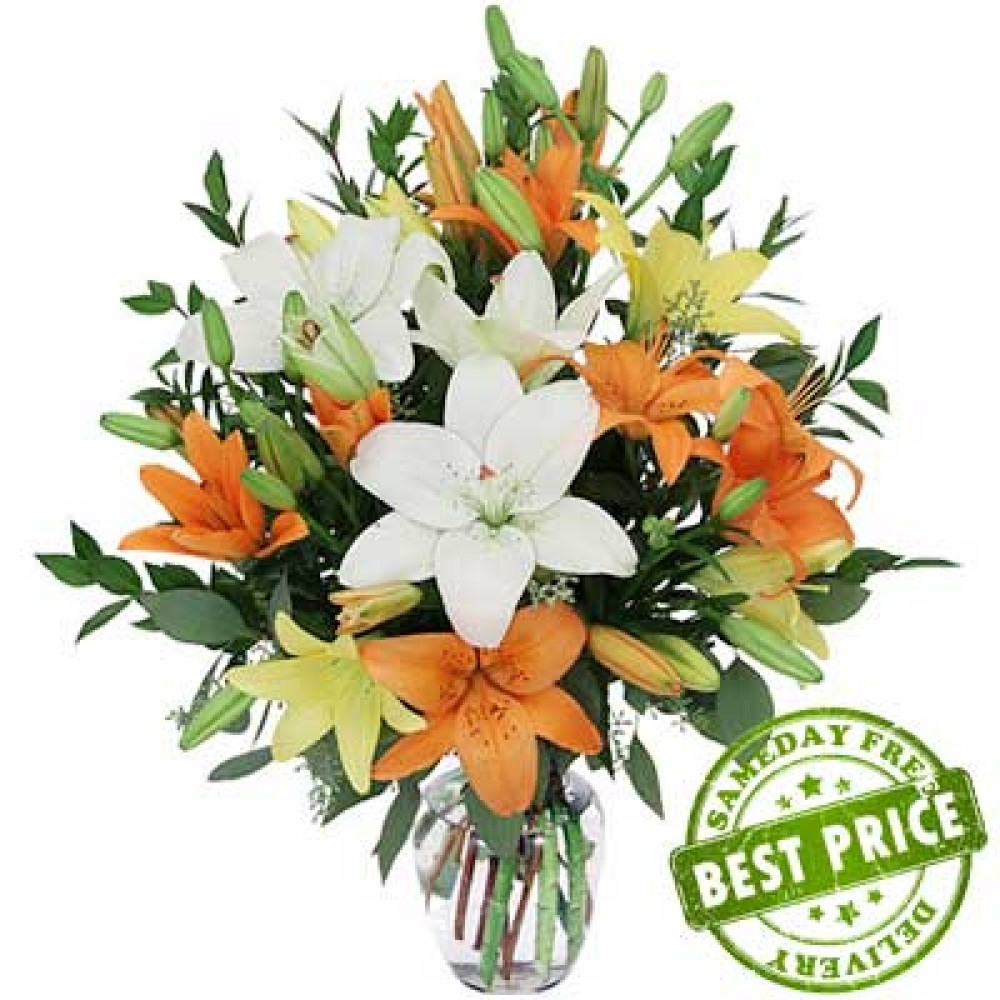 Asiatic Lily of the Valley