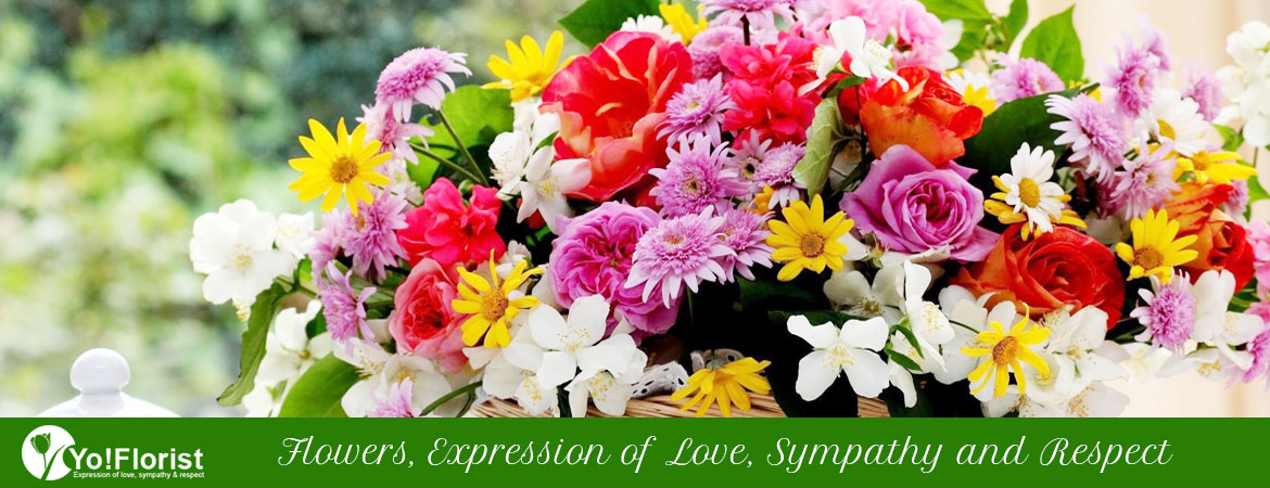 Flowers Expression of Love Sympathy and Respect
